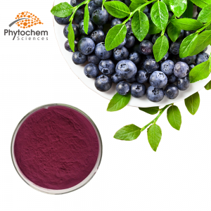 Blue berry powder