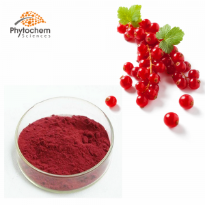 Cranberry powder