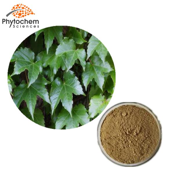 Ivy leaf powder