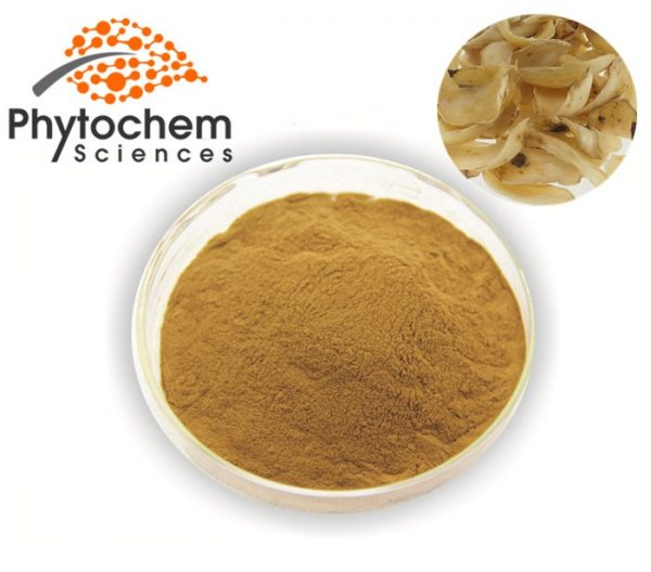 Lily extract powder