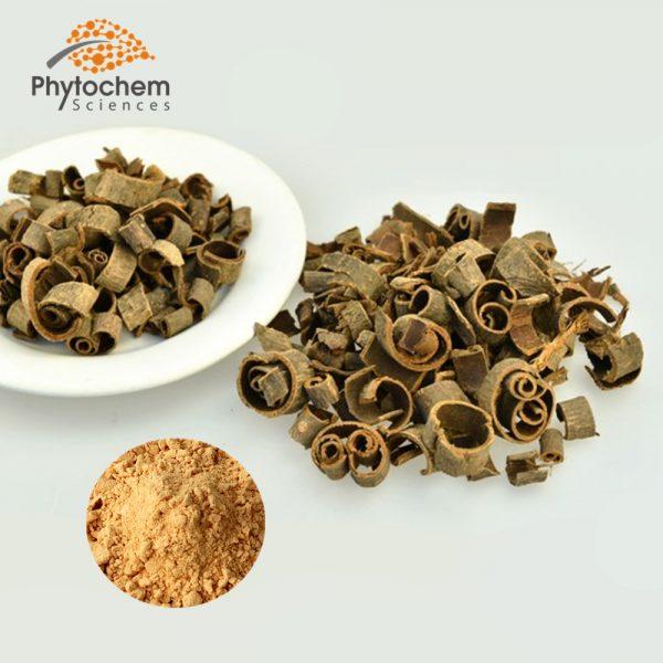 Magnolia bark extract powder