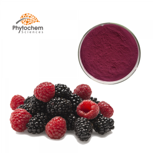 Mulberry fruit extract powder