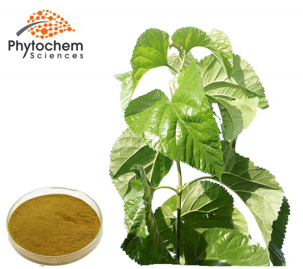 Mulberry leaf powder