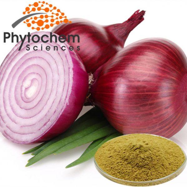 Onion powder extract