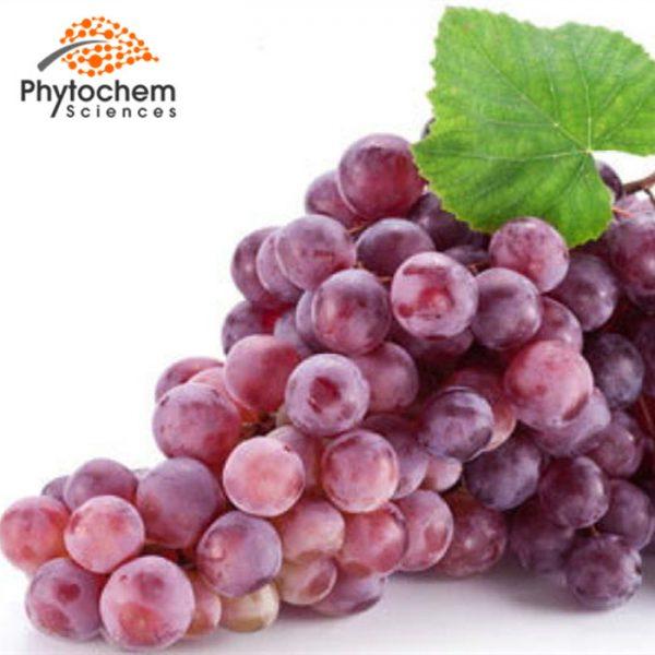 Raw Material Grape