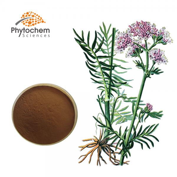 Valerian plant extract
