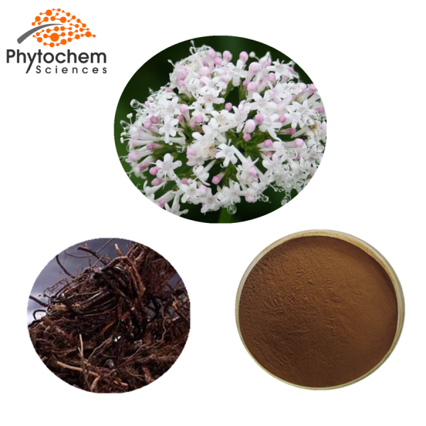 Valerian powder extract