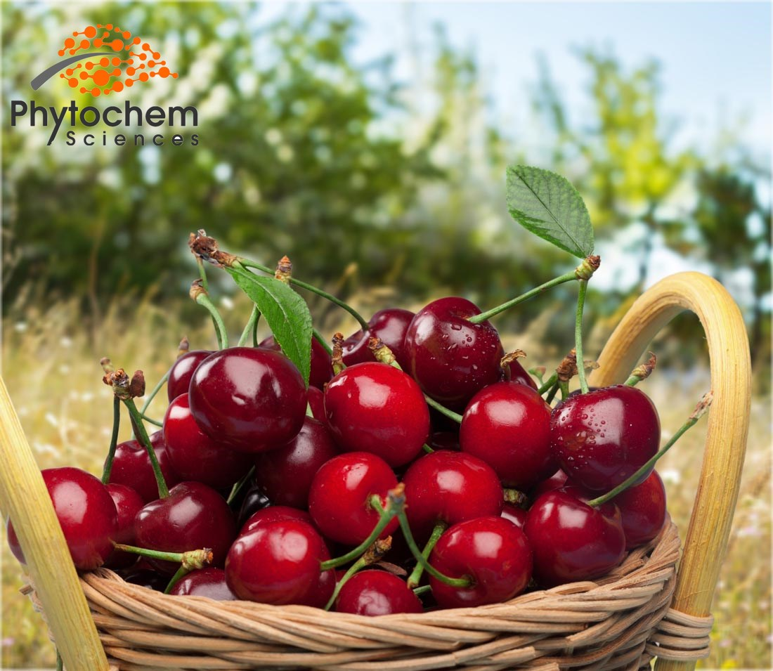 Acerola Cherry Benefits