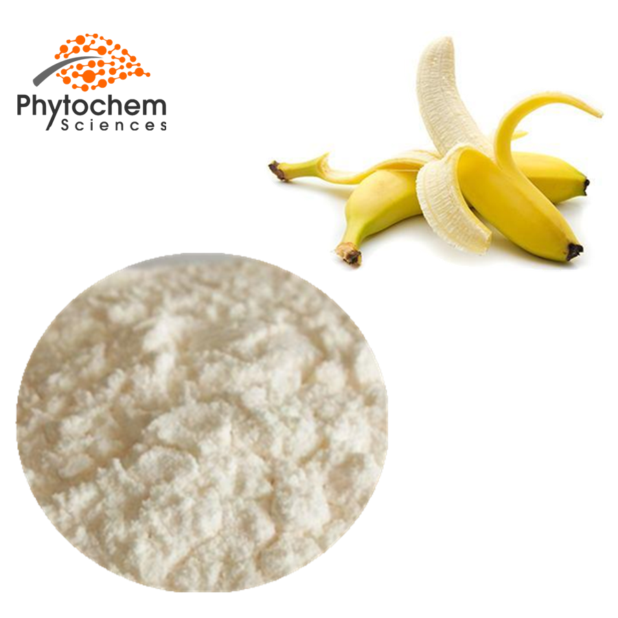 Banana Fruit Juice Powder