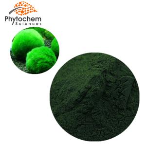 Chlorella powder