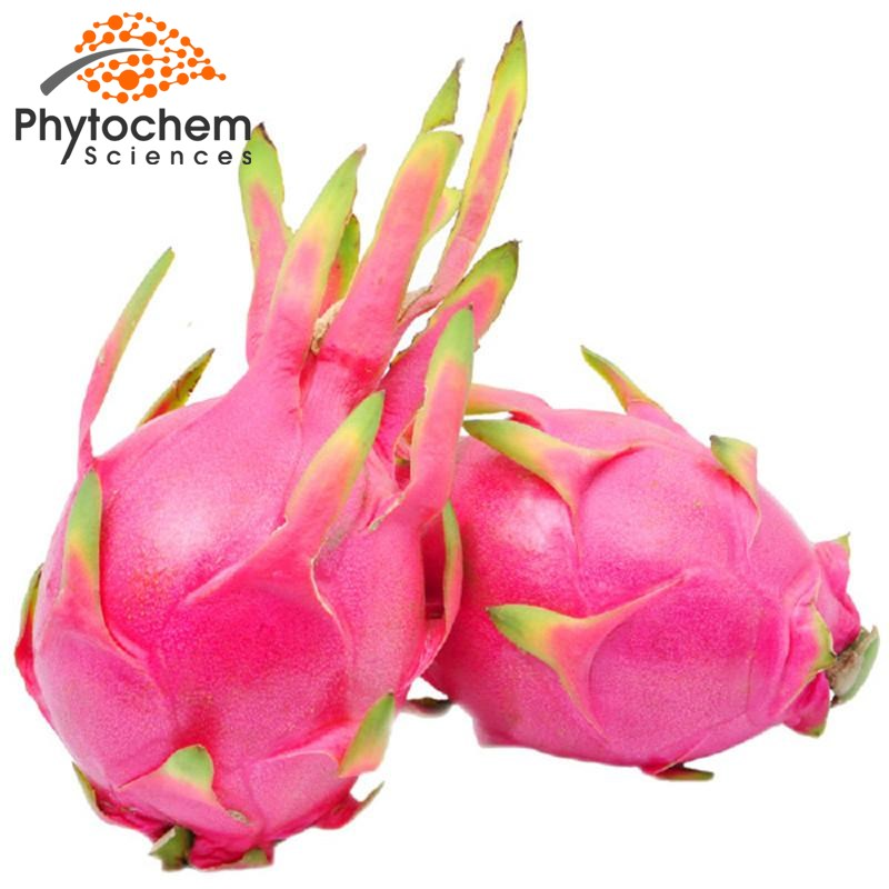 Organic Pitaya Powder