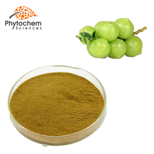 amla fruit extract