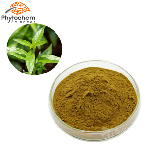 andrographis paniculata leaf extract