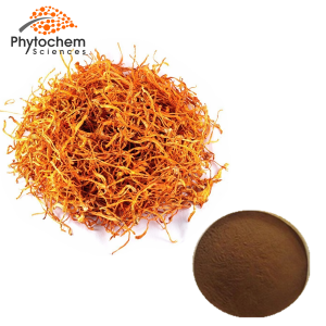 cordyceps militaris powder