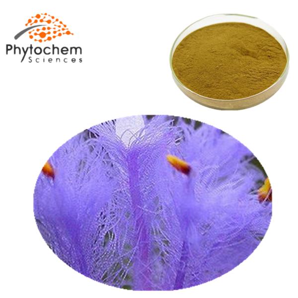 cyanotis vaga powder