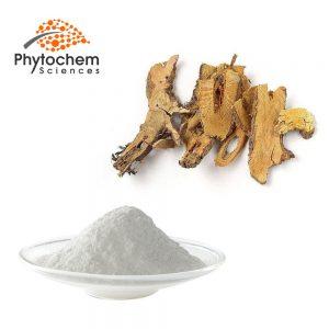 polygonum cuspidatum root extract