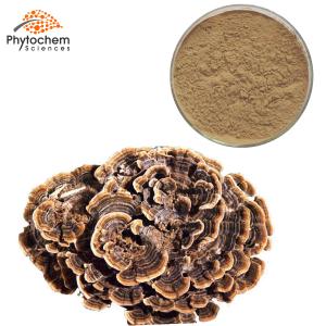 Coriolus Versicolor Extract