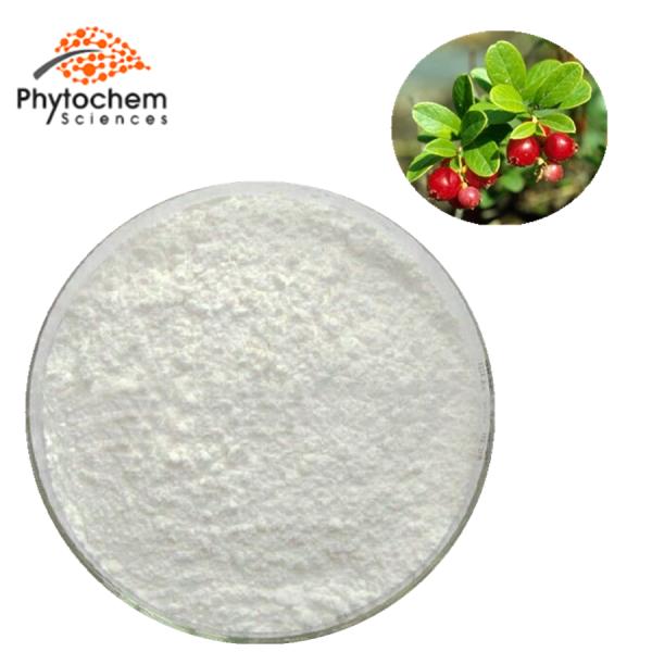 Uva Ursi Extract Powder