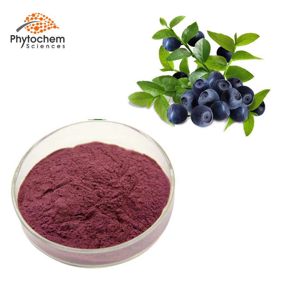 acai berry powder supplement
