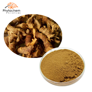 alpinia galangal extract powder