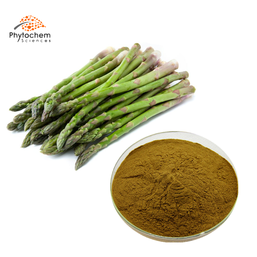 asparagus officinalis extract powder
