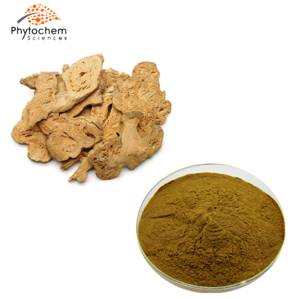 atractylodes macrocephala extract powder