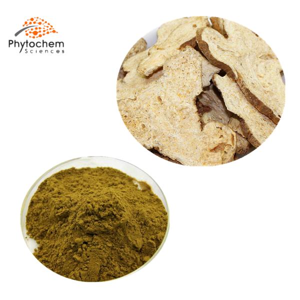 atractylodes macrocephala powder extract