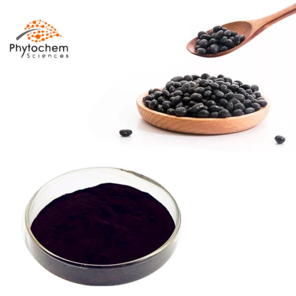 black bean hull extract powder