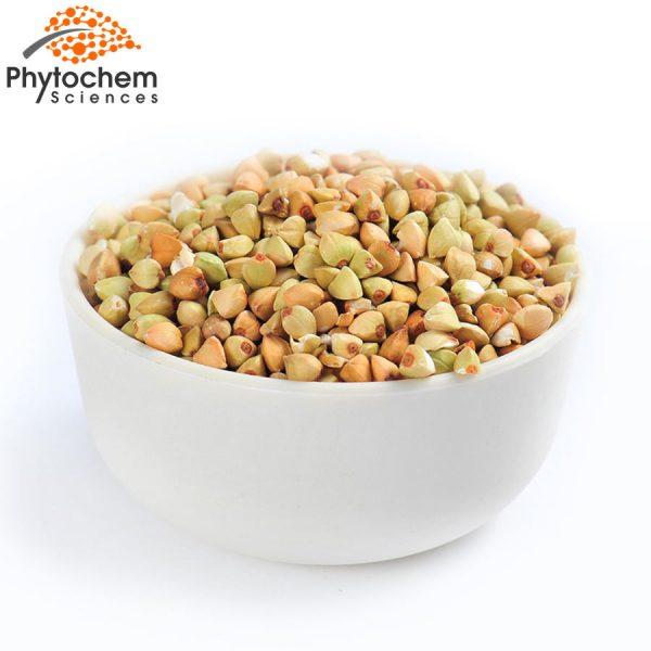 buckwheat extract benefits