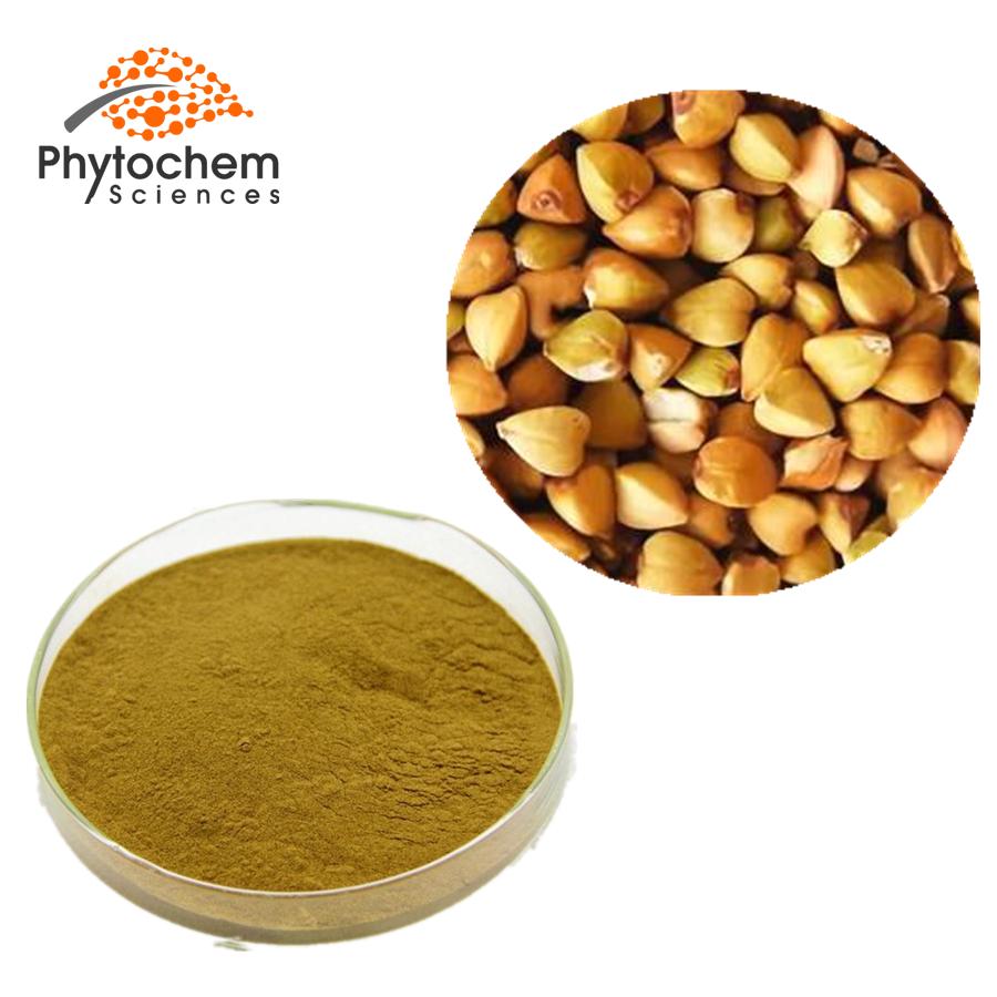 buckwheat extract powder