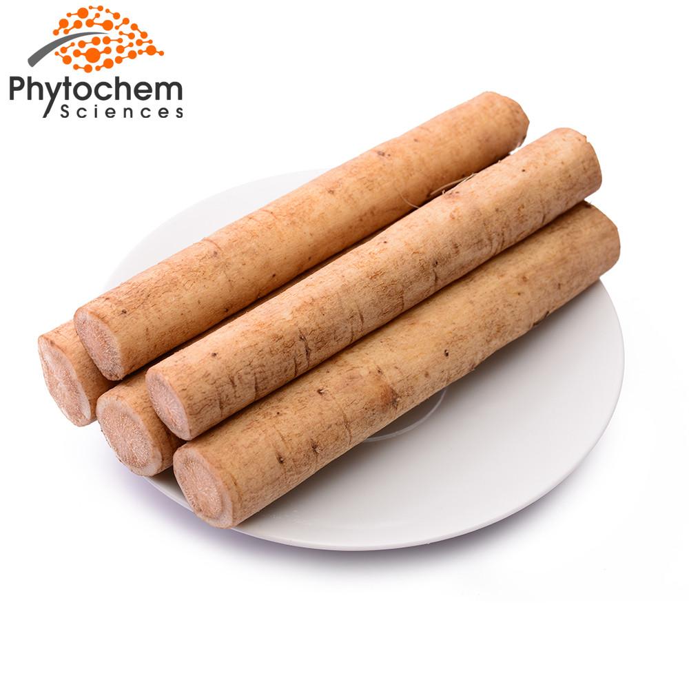 burdock root extract benefits
