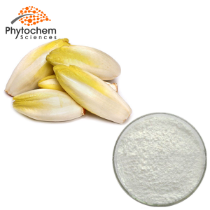 chicory root extract