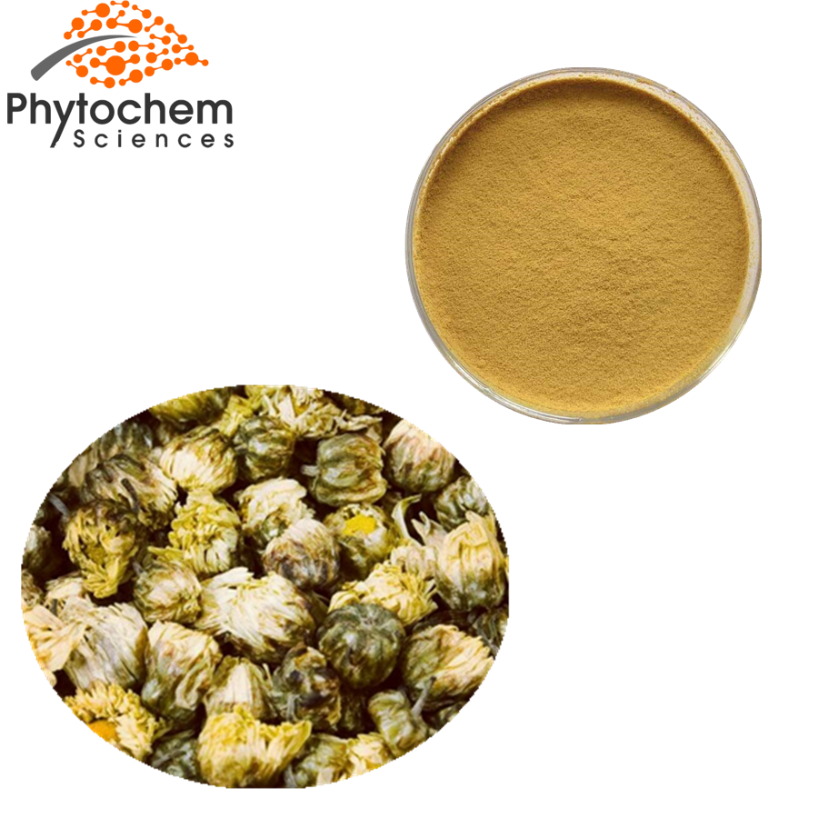 chrysanthemum extract powder
