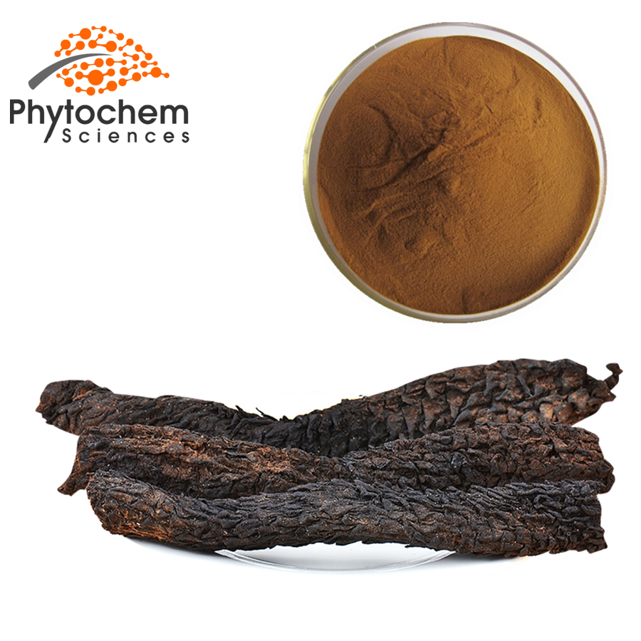 cistanche tubulosa powder extract