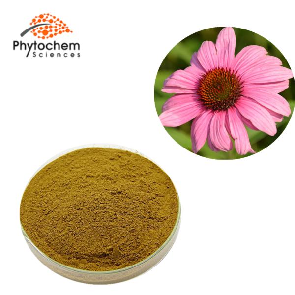 echinacea angustifolia extract