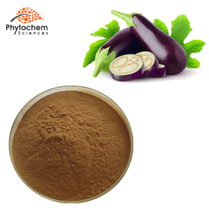 eggplant extract for skin cancer