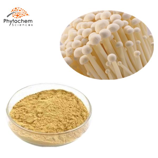 enoki mushroom extract