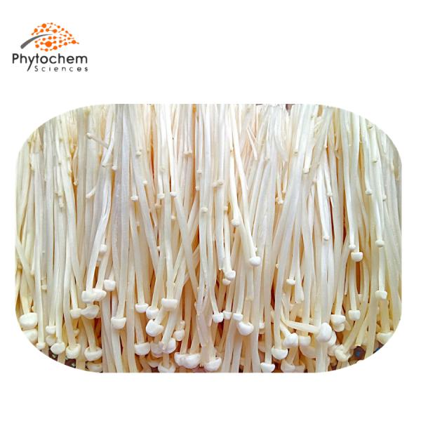 enoki mushroom extract benefits