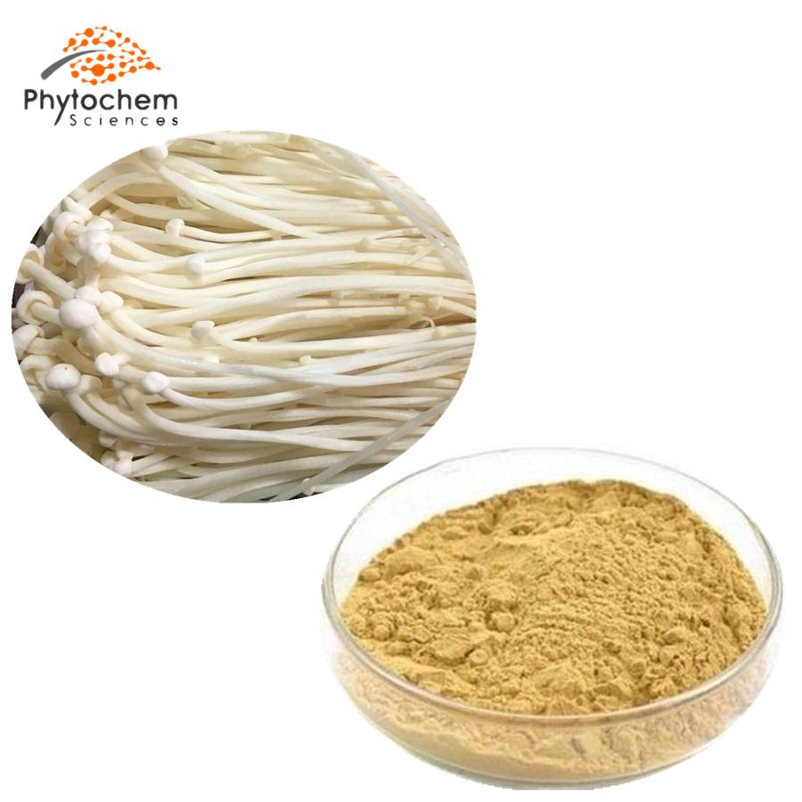 enoki mushroom extract powder