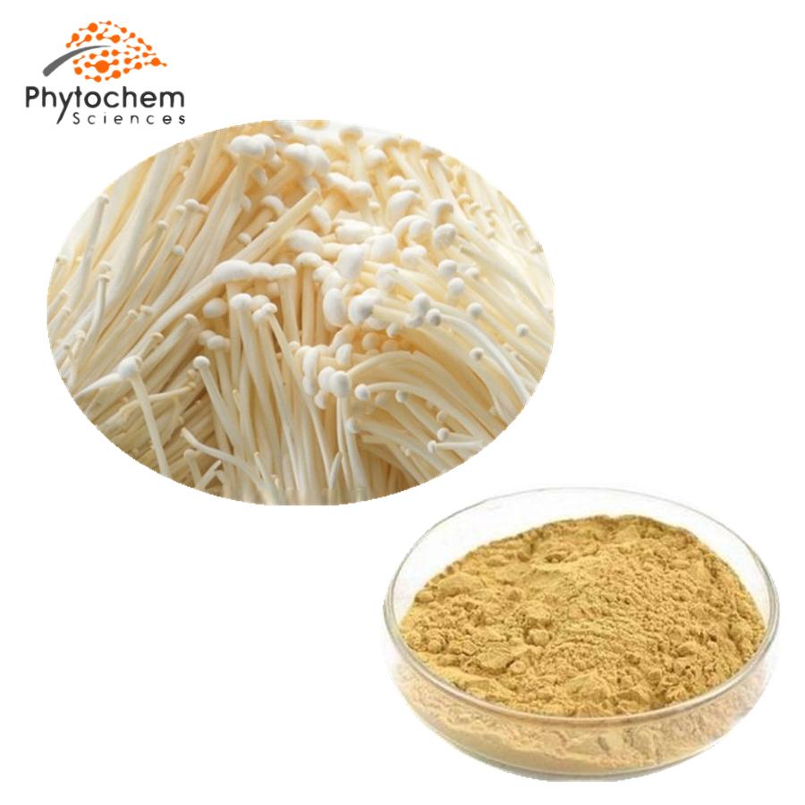 enoki mushroom powder extract