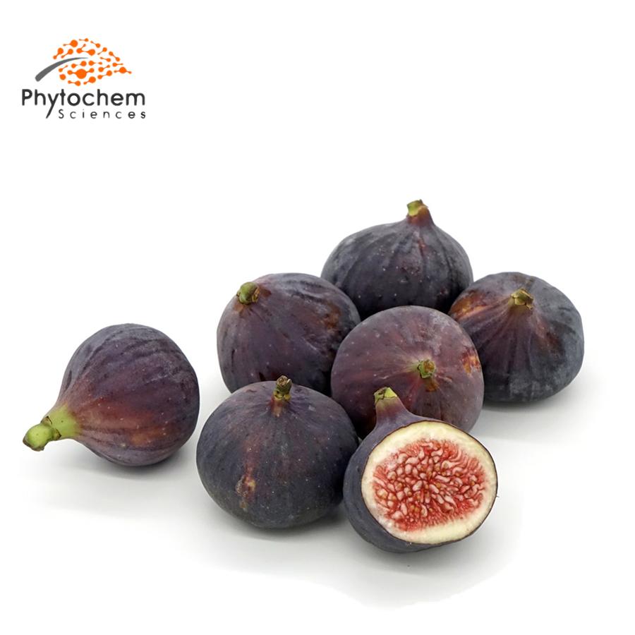 fig extract benefits