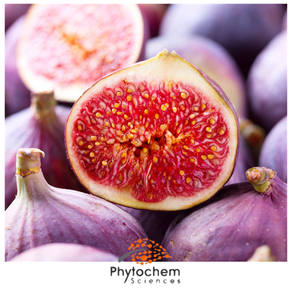 fig extract for skin