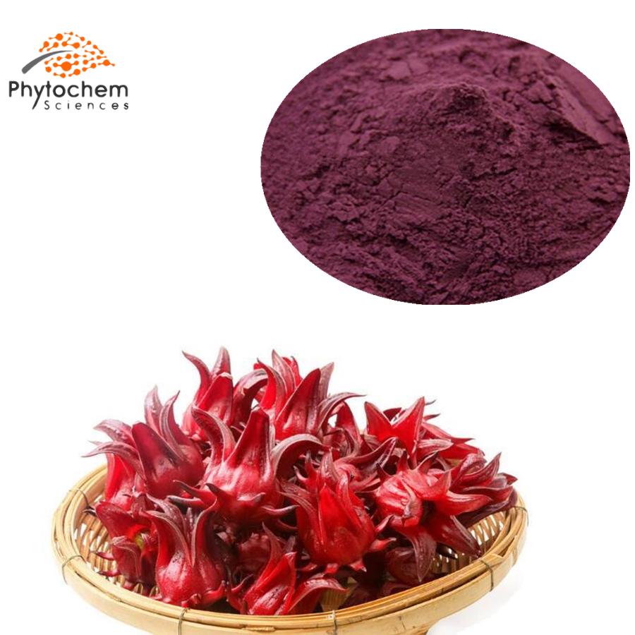 hibiscus sabdariffa flower extract
