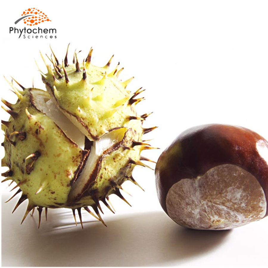 horse chestnut extract benefits