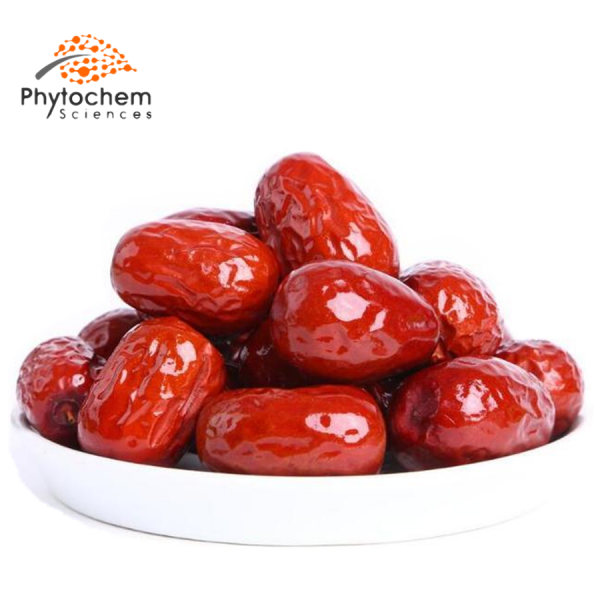 jujube extract benefits