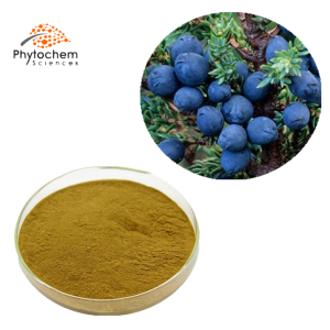 juniper berry extract powder
