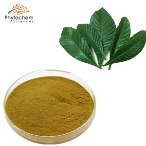 loquat leaf extract