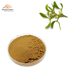 mistletoe extract