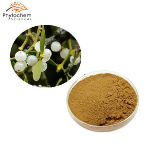 mistletoe extract powder