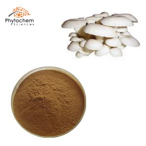 oyster mushroom extract powder
